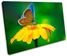 Butterfly Flowers Animals - 13-1157(00B)-SG32-LO